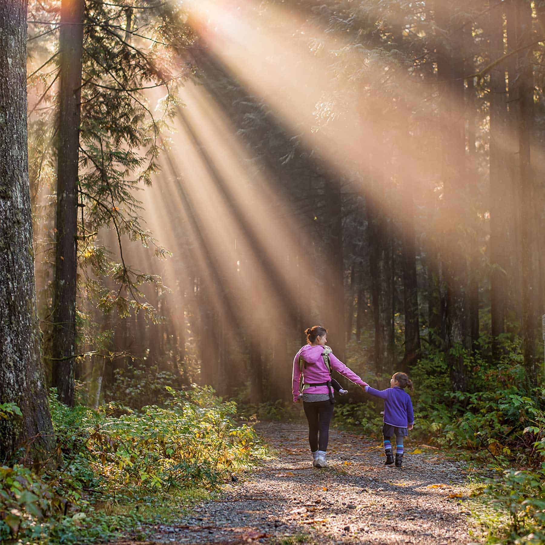 ASafePlace Mother Daughter Walking SunLight Forest 1