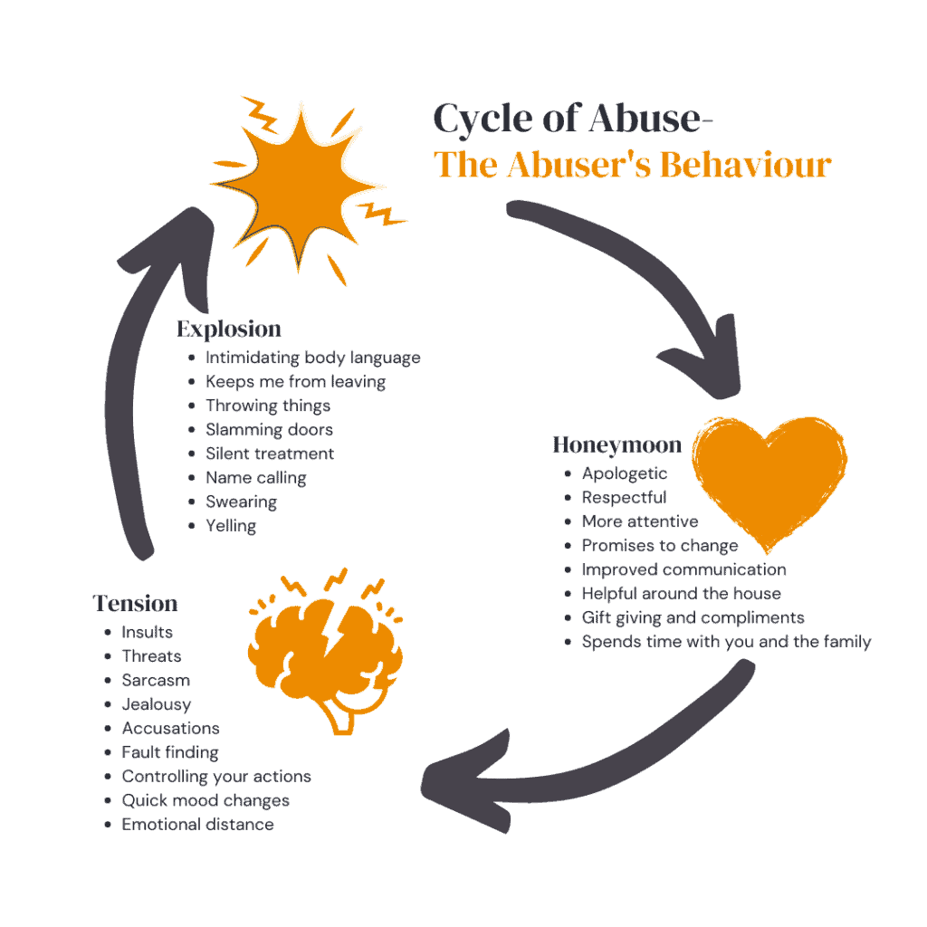 Cycle of Abuse The Abusers Behaviour